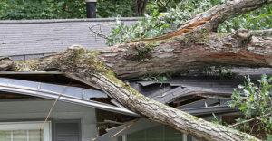 bigstock-Storm-Damage-21500924